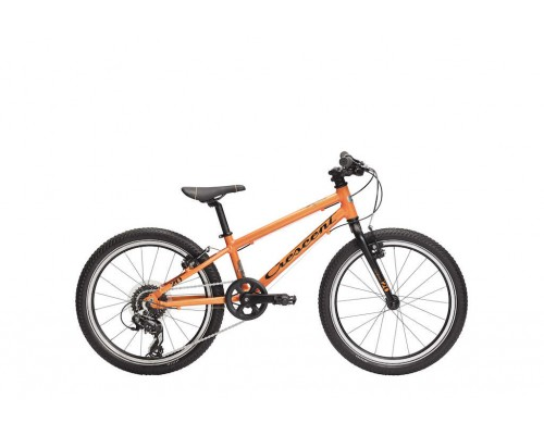 "Team JR lightweight 20"", 8-vxl"