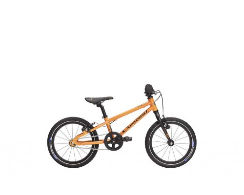 "Team JR lightweight 16"", 0-vxl"